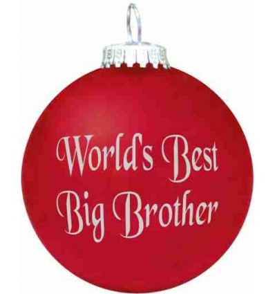 World's Best Big Brother